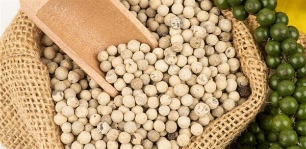Перець білий: склад, калорійність, користь, рецепти