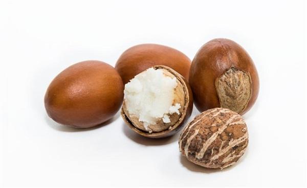 Плоди ши: користь, шкоду, як їдять, рецепти