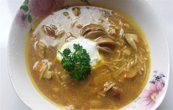 Рецепт супу з білих грибів на курячому бульйоні, покрокове приготування і фото