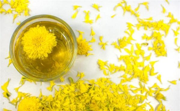 Квіти хризантеми: користь, шкоду, рецепти страв і напоїв