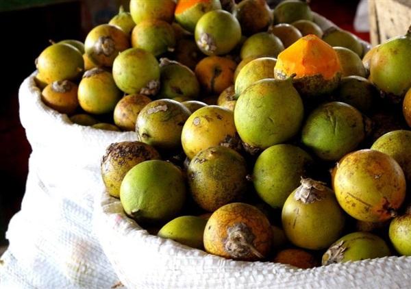 Тукума: користь, шкоду, як їдять, рецепти з плодами астрокариума колючого